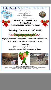 Holiday with the Animals